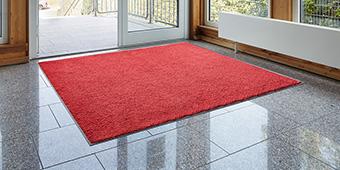 Коллекция Monotone, грязепоглощающие ковры, стоимость